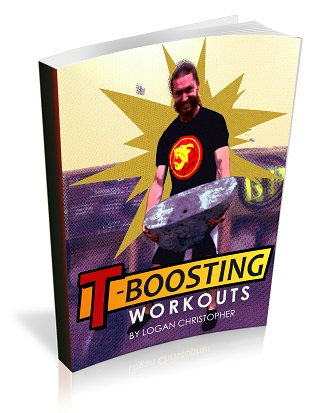 TBoostingWorkoutsReportSmall